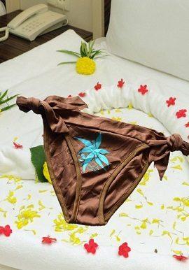 silky,soft,bridal,panty,underwear,brief,online,online india