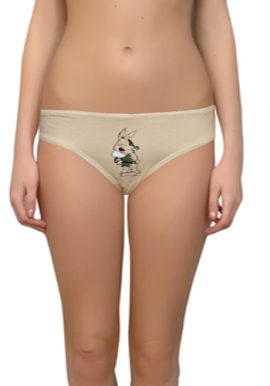 Comfy Lady's Normal Wear Brief Pk Of 2