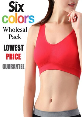 Wholesale Sport Bra Lot -Six Pieces Assorted Colours