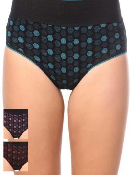 Absolute Fitted Plus Size Hipster Panties (Pk of 2)