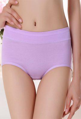 Westren Beauty Comfortable Plus Size 3-Pack Panties