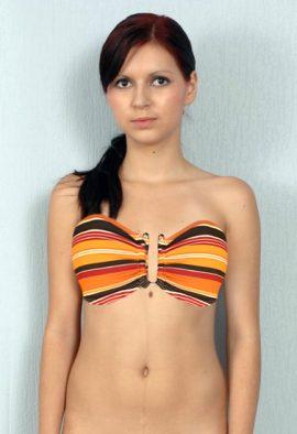 Beach Wear Sexy Stripe U-Bandeau Bra