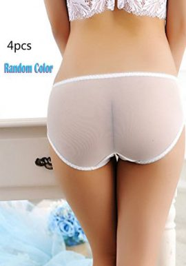 4 Pcs Women's See Through Mixed Briefs