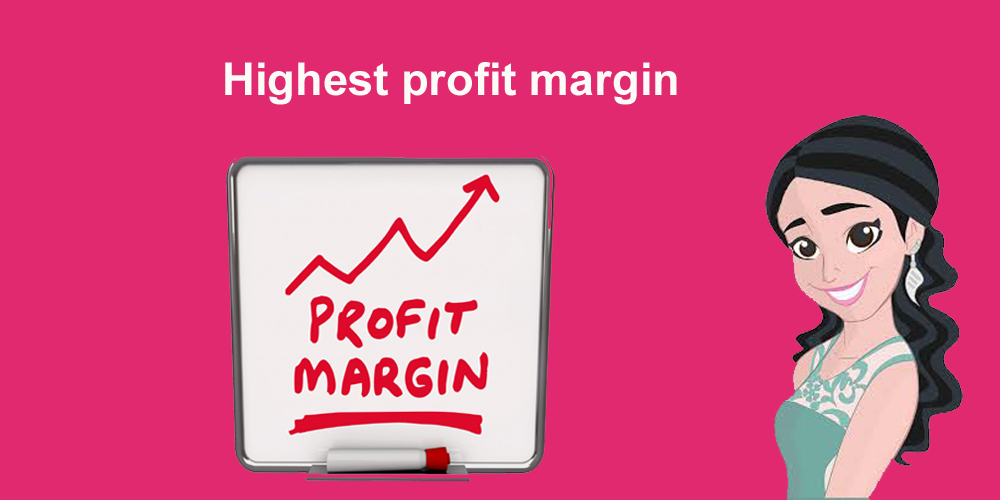 Highest profit margin dropshipping company in India Snazzyway