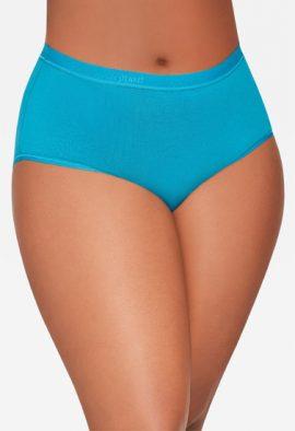 Women's Best Fitting Panties Briefs 4 Pack